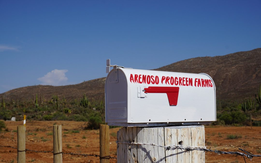 ProGreenUS-Contel Showcases Successful Farming Operation at ProGreen Farms™ Arenoso, With First Harvest Underway