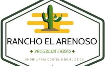 ProGreen Farms™ in Baja California Now Shipping Fresh Produce to U.S. Market